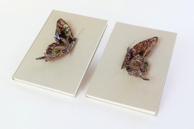 Demi Papillon Livre Mémoire de vie